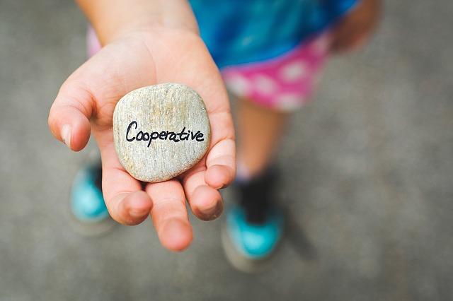 cooperacion-entidades-sin-animo-lucro
