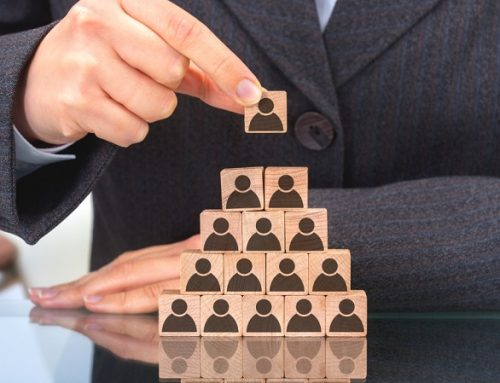 Tips to compose the hierarchy of a company and promote its growth